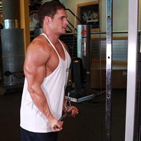 Triceps   Extensiones de tríceps en polea alta